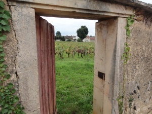 A door opening to the vineyards