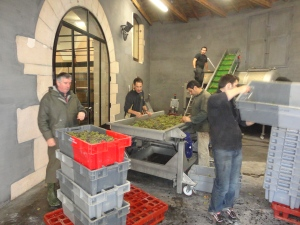 The white wine processing